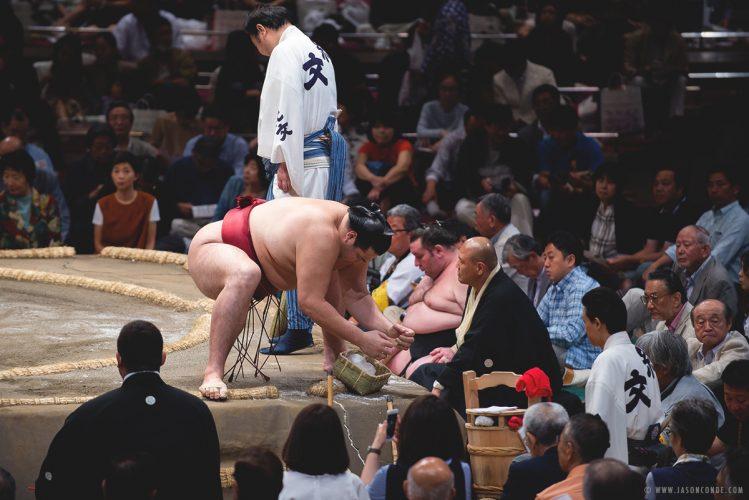 sumo_2