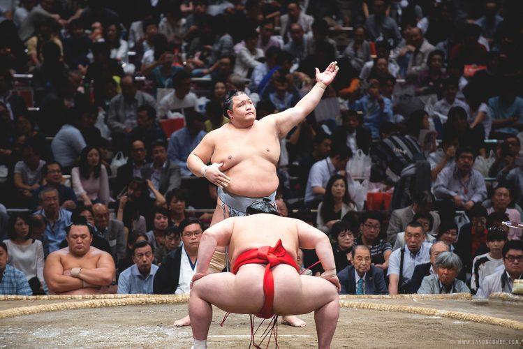 sumo_5