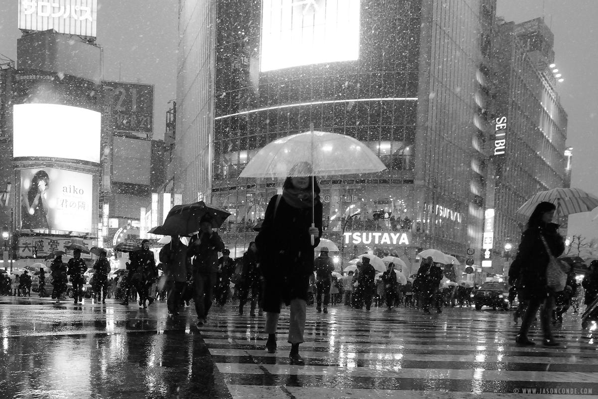 shibuya-snow