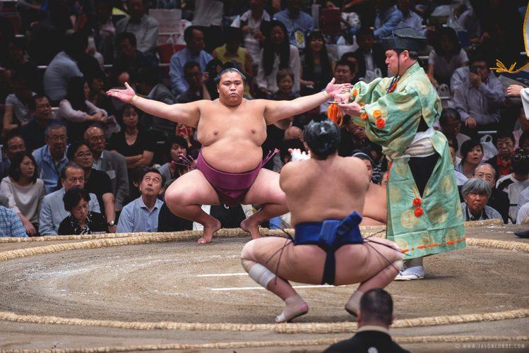 sumo_1